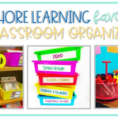 Lakeshore Learning Favorites for Classroom Organization